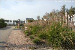 Chaletpark Wilgenoord